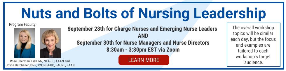 The Nuts and Bolts of Nurse Leadeship seminar - the Organization of Nurse Leaders